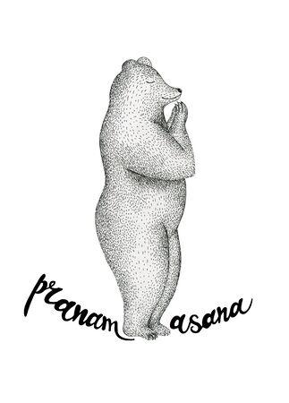 pranayama: illustration of fun a bear isolated on vintage background. Print posture of morning practice pranayama asana pose yoga.
