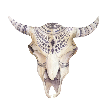 skull design: Watercolor cow skull with flowers , arrows and feathers. Boho tribal style bull design. American indians bison head. buffalo illustration