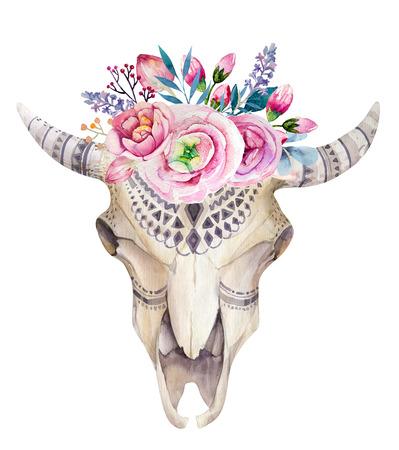 cuernos: cráneo de la vaca de la acuarela con las flores y plumas de decoración. diseño tribal boho estilo rústico cuerno de búfalo. Toro de cuernos largos occidental aislado en blanco backgraund