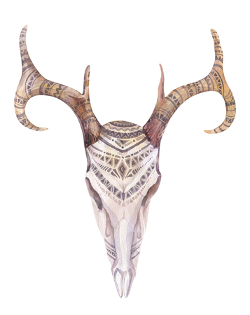 animal skull: Watercolor  skull with flowers , arrows and feathers. Boho tribal style bull design. American rustic indians bison head. buffalo illustration Stock Photo