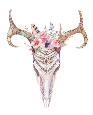 cow skull: Watercolor bohemian deer skull.  Western mammals. Watercolour  boho decoration print antlers with flowers, feathers. Isolated on white background. Boho style.  Hand drawn illustration. Ethnic themed design.