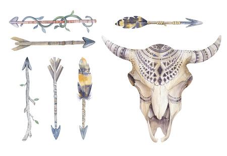 꽃, 화살표와 깃털을 가진 수채화 소 두개골. 보헤미안 부족 스타일 황소 디자인. 미국의 소박한 인디언 들소의 머리. 버팔로 그림