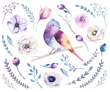 Watercolor boho flower set and bird. Spring or summer decoration floral bohemian design. Watercolour isolated. foliage illustration with rose, green leaf, feather. Botanical aquarelle.