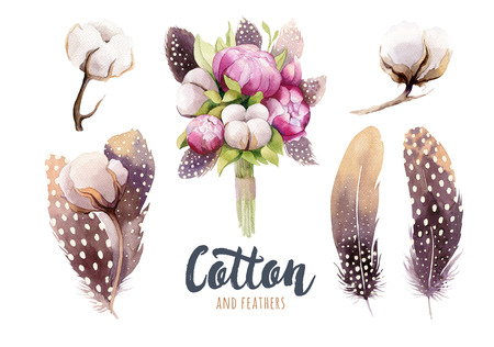 Set of hand drawn watercolour Cotton boll, peonies and feathers. Isolated watercolor peony  painting  pon white background. Cotton  branch flower and feather print decoration.