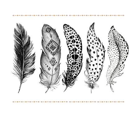 手描き鳥の羽が白い背景で隔離のセットです。自由奔放に生きる装飾寓話黒ペン鳥記号。抽象的な装飾グラフィック描画の矢印線記号要素。