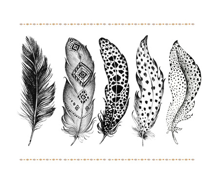 Set of hand drawn bird feathers isolated on white background. Boho decoration allegory black pen bird sign. abstract decoration Graphic drawing arrow line symbol element. Stock Photo