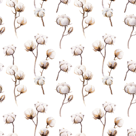 Watercolor vintage background with twigs and cotton flowers boho decoration. Softness Botanical watercolour seamless pattern print. Bohemian floral branch drawing.