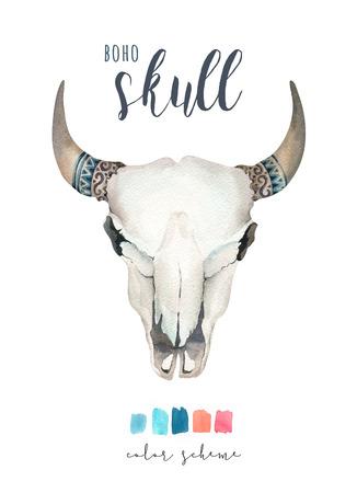 Watercolor bohemian cow skull.  Western mammals. Watercolour hip