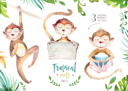 Hand drawn watercolor tropical plants set and monkey. Exotic palm leaves, jungle tree, brazil tropic botany elements and monkeys. Perfect for fabric design. Aloha set,
