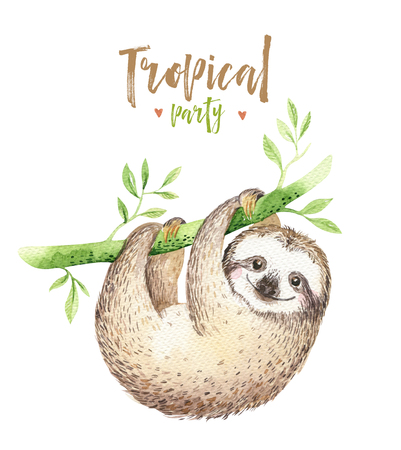 아기 동물 나태 보육 절연 그림. 수채화 boho 열 대 그림, 자식 열 대 그림입니다. 귀여운 야자 나무 잎, 트로픽 녹색 질감, 이국적인 꽃. 알로하 그림