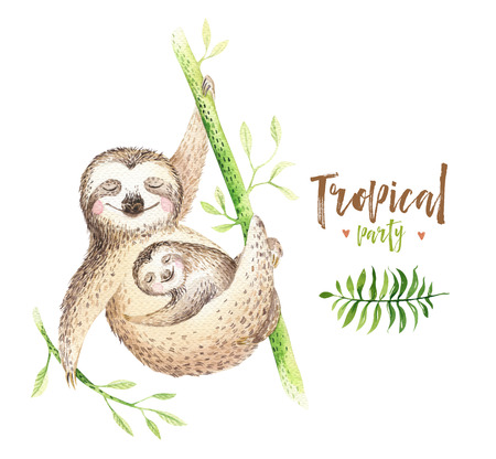 Baby animals sloth nursery isolated painting. Watercolor boho tropical drawing, child tropical illustration. cute palm tree leaves, tropic green texture, exotic flower. Aloha drawing