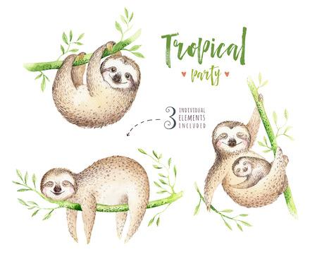 아기 동물 느림보 보육 절연 그림. 수채화 boho 열 대 그림, 자식 열 대 그림입니다. 귀여운 야자 나무 잎, 트로픽 녹색 질감, 이국적인 꽃. 베이비 샤워