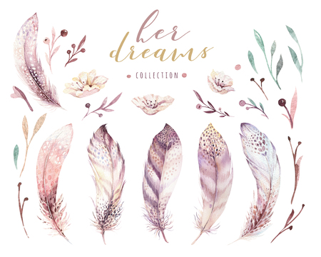 ●手描きの水彩画鮮やかな羽セット。ボーホスタイルのバラの翼。白で隔離されたイラスト。Tシャツ、招待状、ウェディングカードのためのバード 写真素材