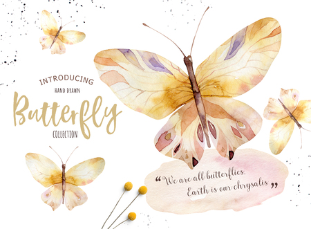 Set of watercolor boho butterfly. Vintage summer isolated spring art. Watercolour illustration. design wedding card, insect, flower beauty banner. Bohemian decoration.