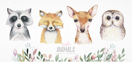 Watercolor set of forest cartoon isolated cute baby fox, deer, raccoon and owl animal with flowers. Nursery woodland illustration. Bohemian boho drawing for nursery poster, pattern Stock Photo