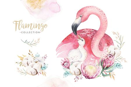 Watercolor cute cartoon illustration with cute mommy flamingo and baby, flower leaves. Mother and baby illustration bird design. Tropical mom bird decoration 免版税图像 - 140290018