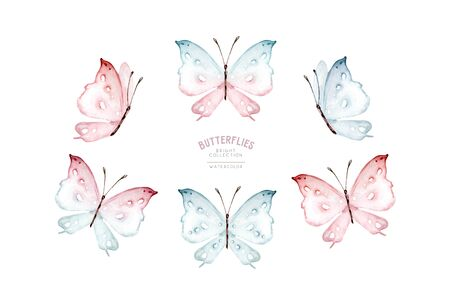 Watercolor colorful butterflies, isolated on white background. blue, yellow, pink and red butterfly spring illustration Foto de archivo