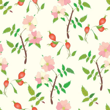 officinal: Seamless pattern with officinal brier