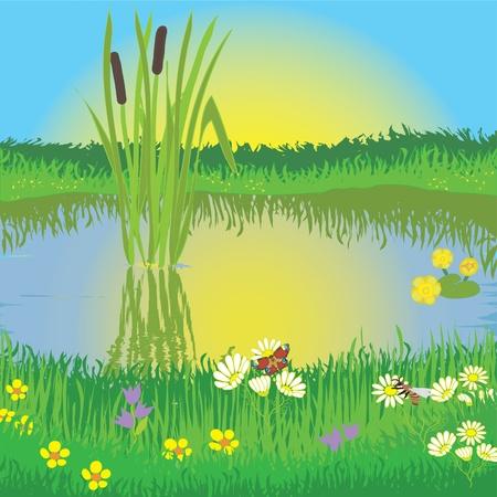 Paisaje con la salida del sol, lago, Prado, flores, abeja, mariposa y totora Ilustración de vector