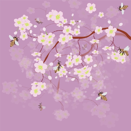Blossoming of cherry and bees Vector