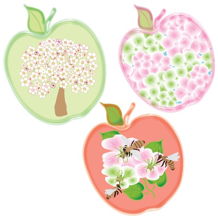 orchard fruit: Set of three apple icons with tree, flowers and bees