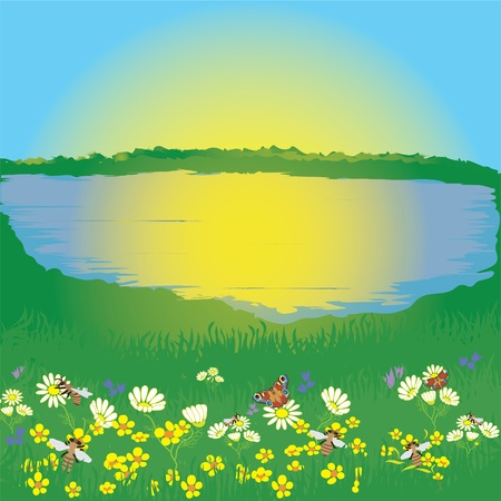 Landscape with lake, meadow, sunrise, flowers, butterfly, bees