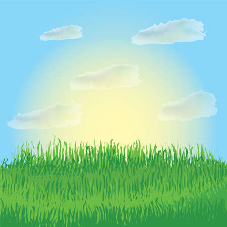 Sunrise landscape with meadow, grass, sky and clouds Stock Vector - 9317609