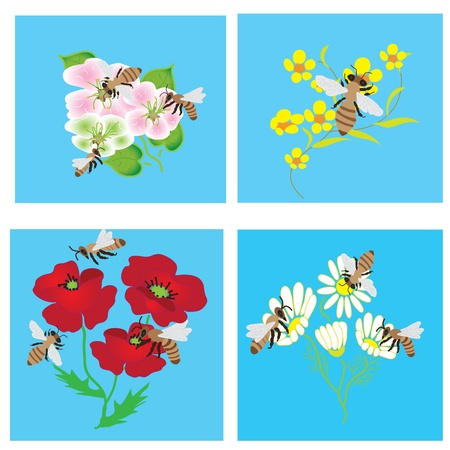 pollination: Set of cards with bees and  beautiful flowers