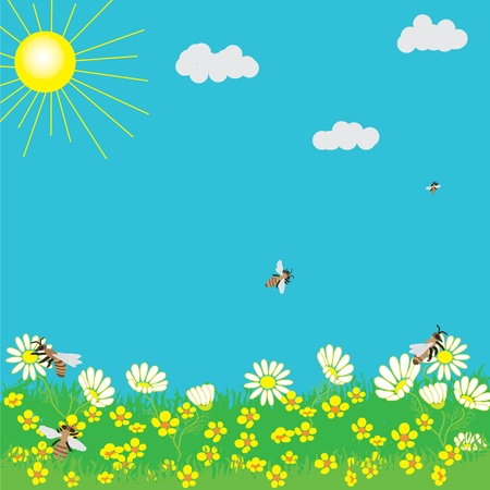 buttercup flower: Spring landscape with sun, grass, flowers and bees.