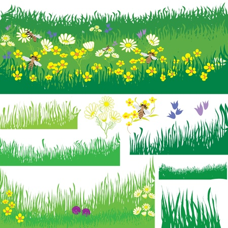 buttercup flower: Set of design elements with grass, flowers and bees Illustration