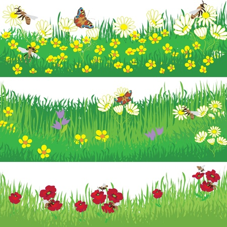Set of design elements with grass, bees, butterfly and flowers