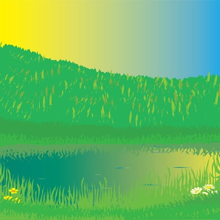 buttercup: Summer landscape with forest, lake,grass and sunrise Illustration