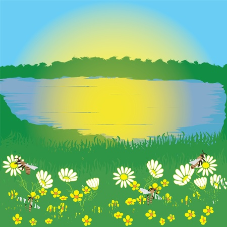 Summer landscape with sunrise, lake and meadow Vector