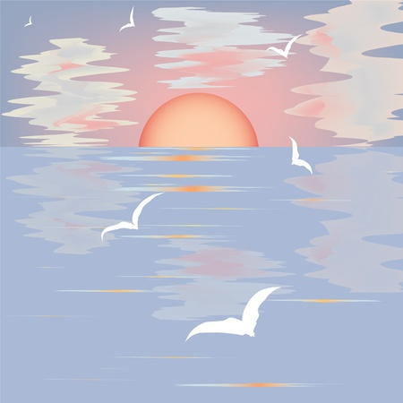Seascape with sunset and seagulls Stock Vector - 9931286