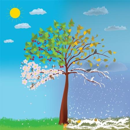 Cuatro estaciones de árboles