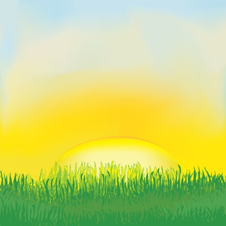 Landscape with sunrise, meadow,grass,cloudy sky Vector