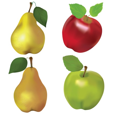 Set of red and green apples and yellow pears isolated on white background Illustration