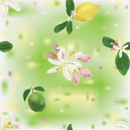 Lemon and lime fruits and flowers in seamless pattern Vector