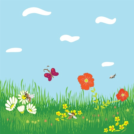 Seamless horizontal background with grass, flowers, butterfly ,bees,sky and clouds Vector