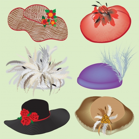 Collection of stylish hats with feathers and flowers for woman Vector