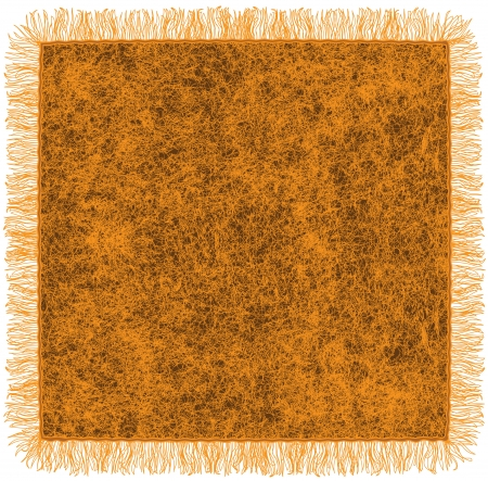 Woollen blanket with fringe in orange and brown colors Vector
