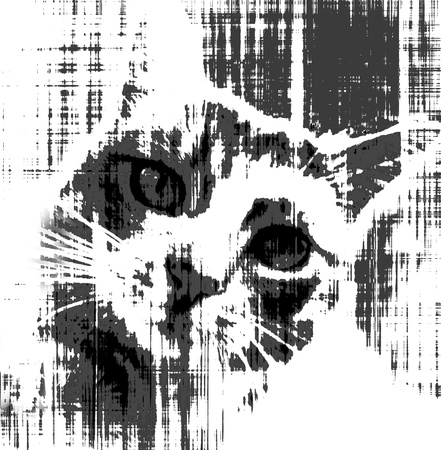 Stray cat call for help.Black and white sketch design.