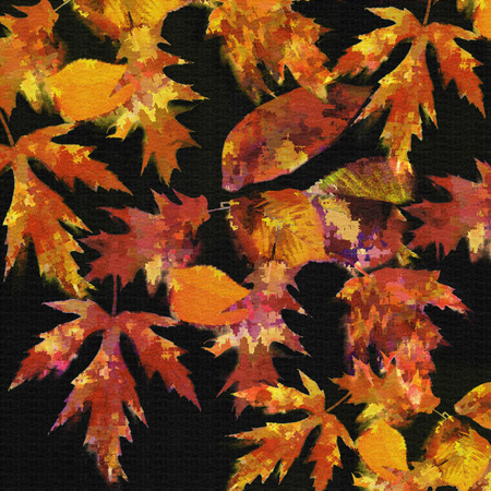 Abstract autumnal composition with bright grunge stained colorful leafs on black background Stock Photo - 23458371