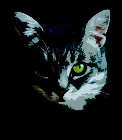 cat eye: Cat sketch exppressive face with accentuate on green eye on black background