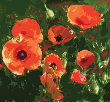 Stylized meadow with red poppies Vector