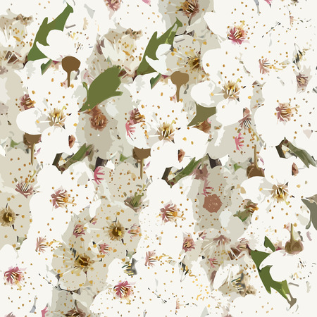 alycha: Floral background with blooming cherry plum Illustration