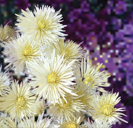 aster: Floral greeting card with white asters on grunge stained violet background Illustration