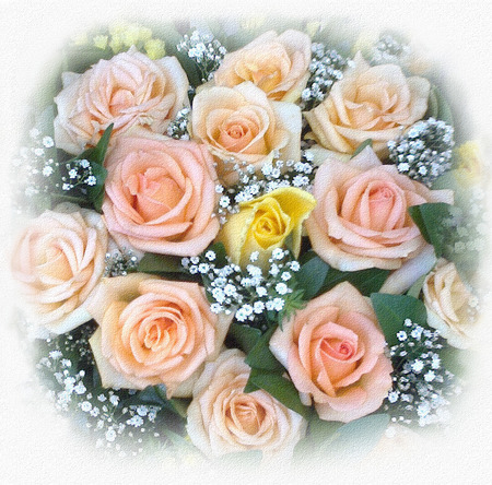 yellow roses: Greeting card with bouquet of pink and yellow roses and small white flowers Stock Photo