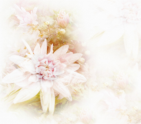 hazy: Greeting card with stylized white chrysanthemums on grunge stained hazy background in pastel colors