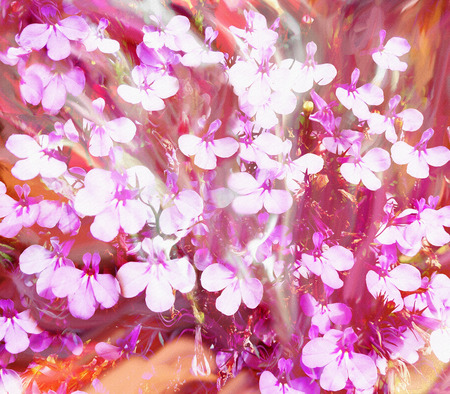 violet red: Floral composition with small  flowers on grunge stained hazy blurred background in white,violet,orange,red colors